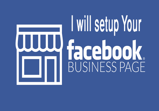 I will create a facebook business pag