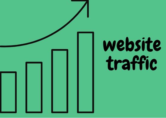 website traffic targeted worldwide