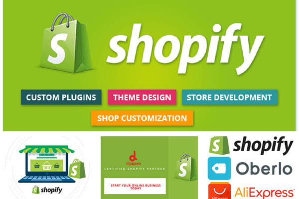 I will build a professional dropshipping Shopify store with winning products