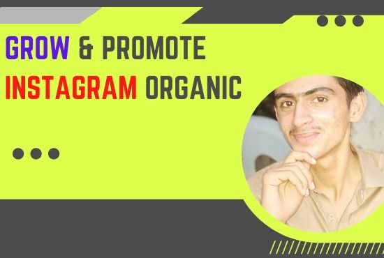 promote Instagram page organic