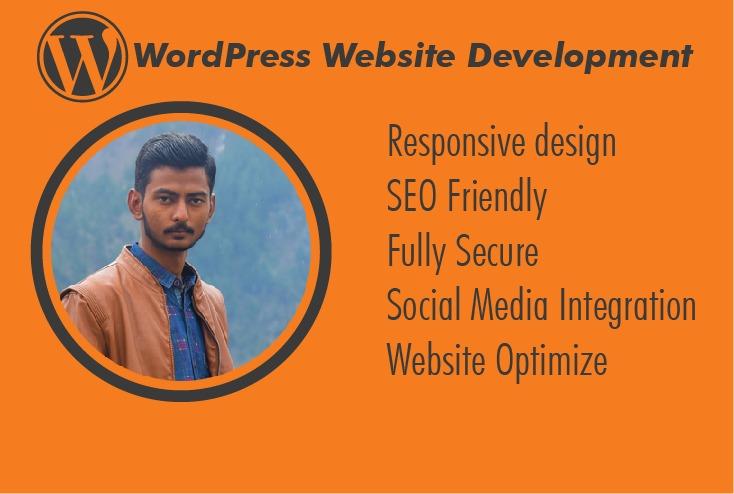 I will do WordPress Website development