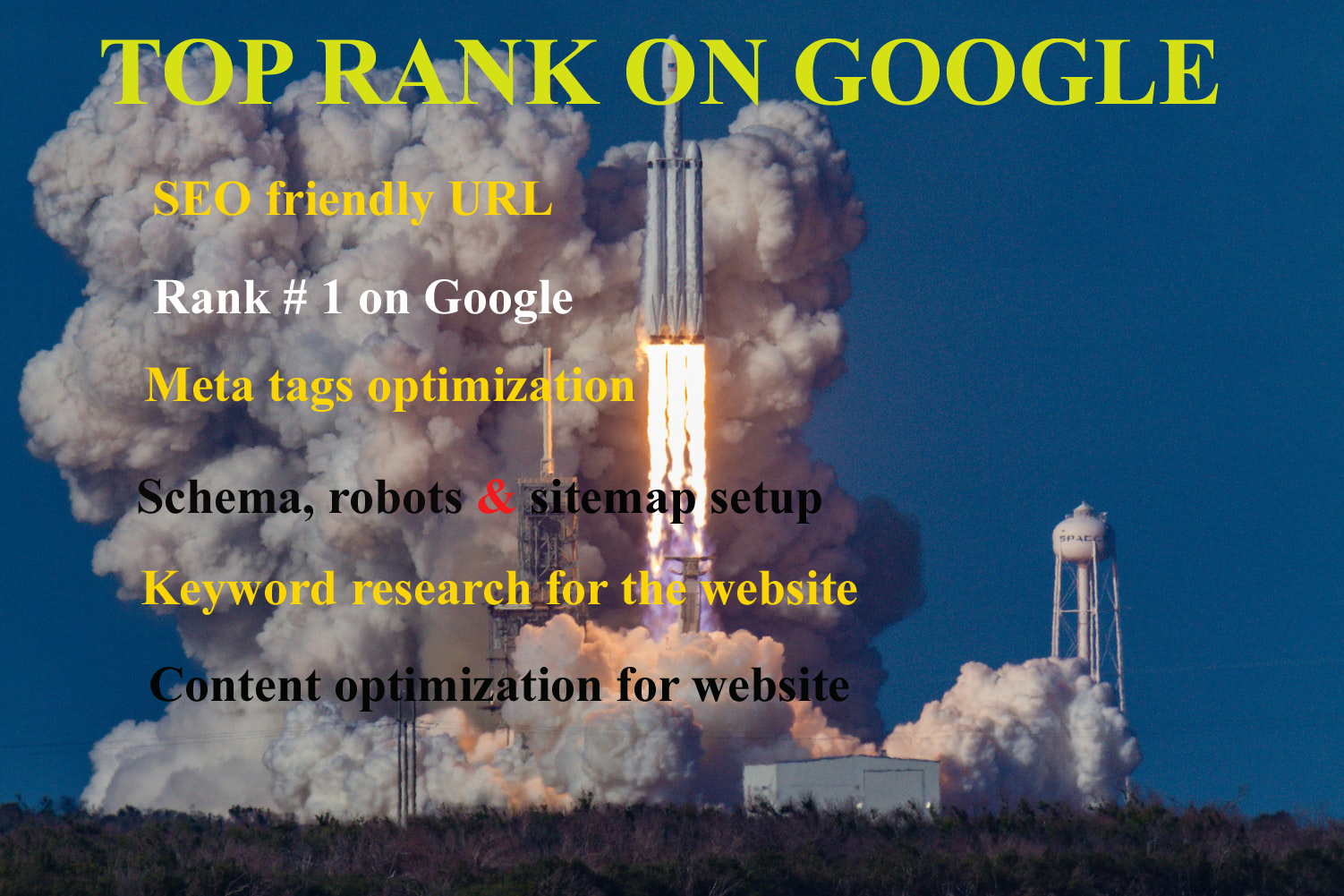 I will render SEO service to get top rank on google