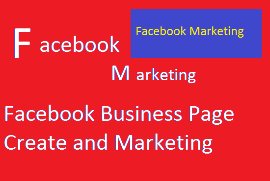 I will create Facebook business page,  total seo,  manage your page and marketing