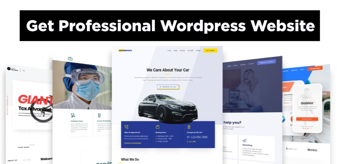 Design a professional and responsive business portfolio or eCommerce WordPress website