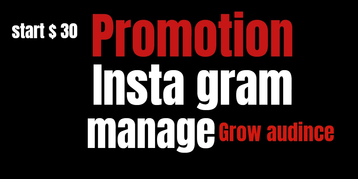 i will Increase Your Instagram Follower And Shoutout Promotion
