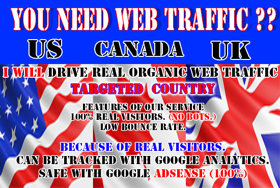 I will drive real US,  UK,  canada organic web traffic SEO keyword targeted