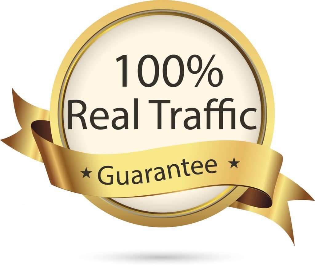 Get 30,000 REAL HUMAN TRAFFIC Website Views