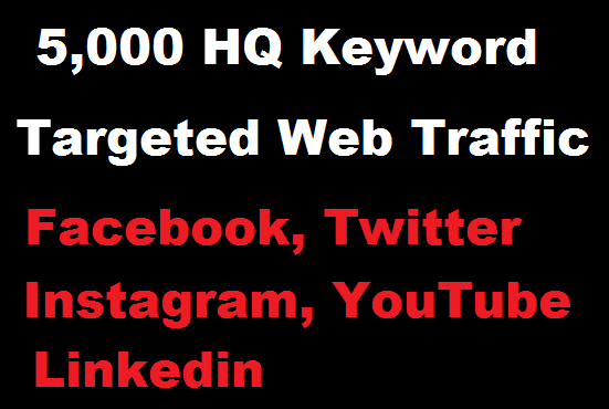 5000 Real HQ Keywords targeted web traffic