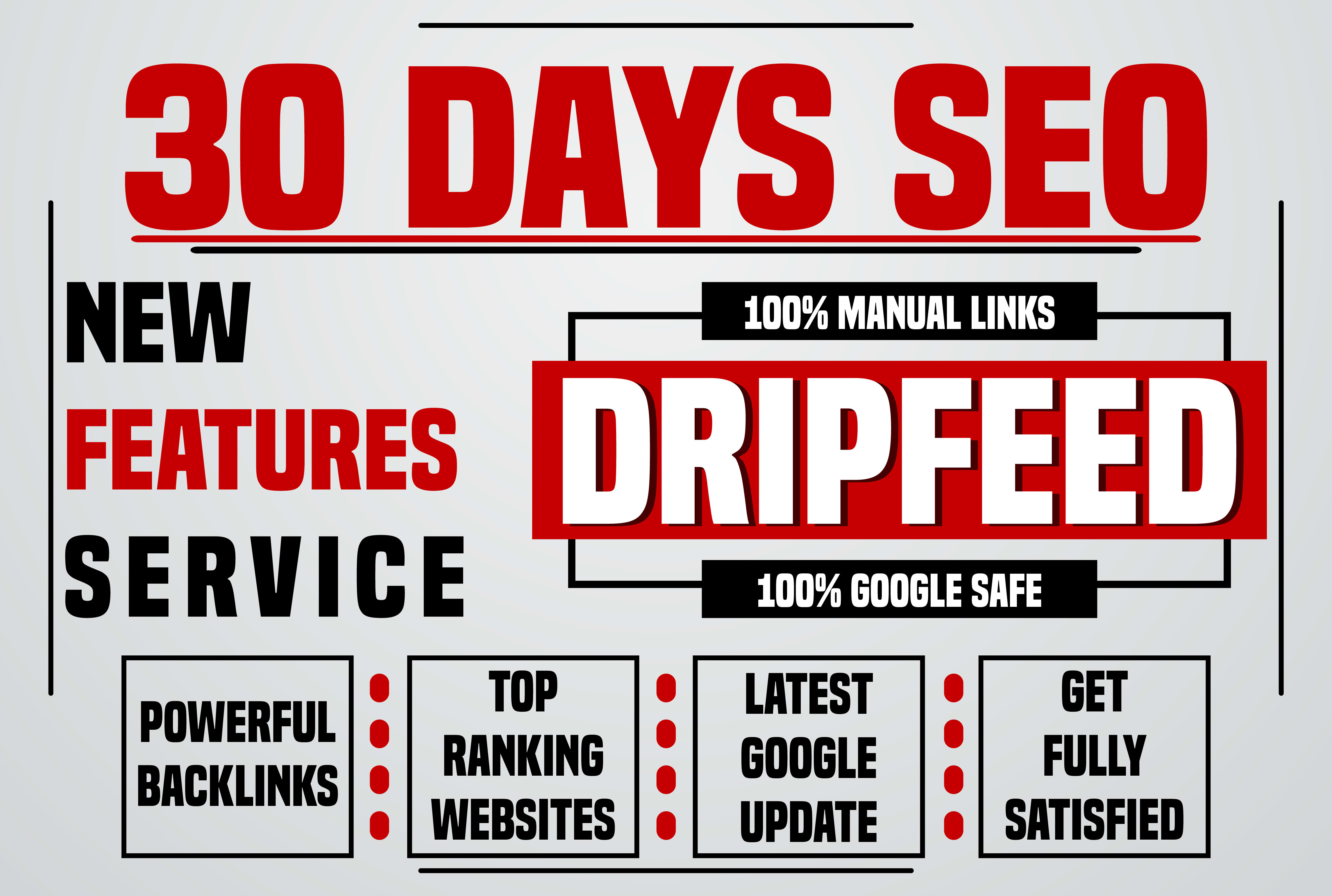 Manually 30 days SEO Package,  drip feed daily 10 do follow backlinks