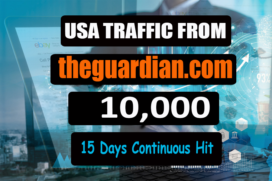 Bring 300 visitor each day for 30 days organic web traffic