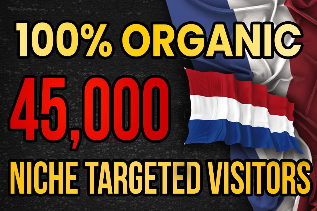 Drive real Netherlands targeted web traffic 60K visitors