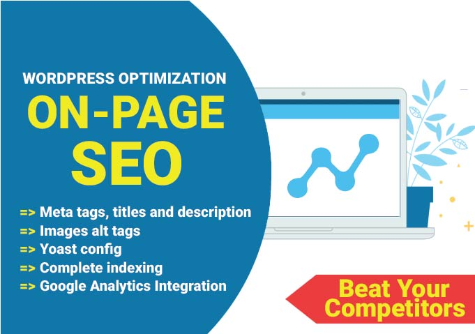 Complete SEO implementation on your wordpress website