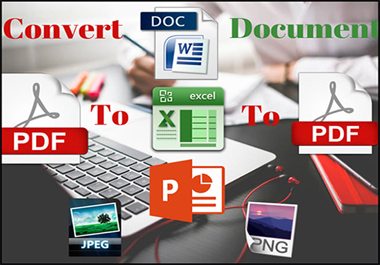 I will convert PDF to excel or scan pages to excel or google sheet