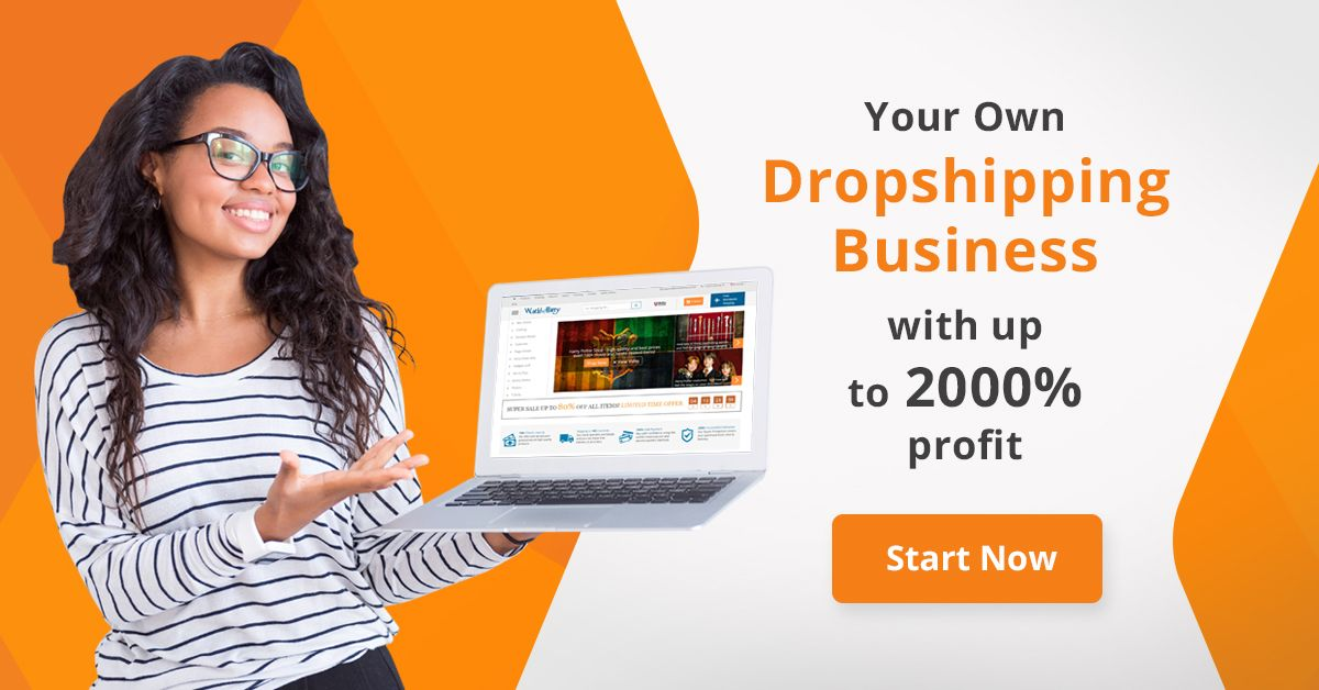 build Alidropship Aliexpress Dropshipping store on Wordpress