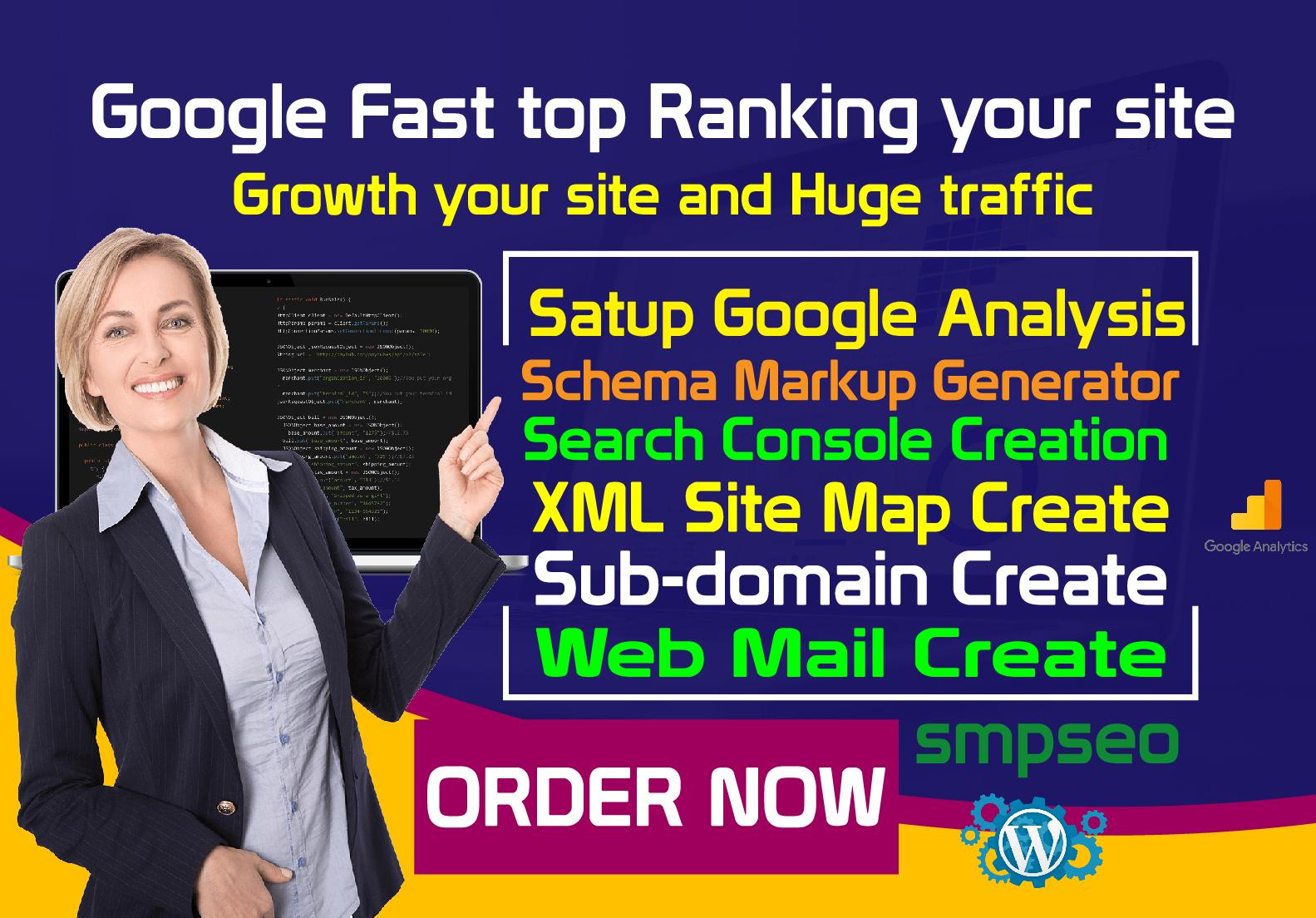 Satup google analysis schema markup other service