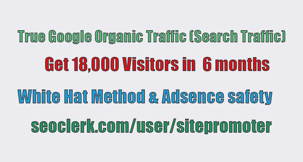 Real organic traffic through google search engine 100+ daily for 6 months