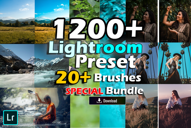 I will provide 1200+ Professional Lightroom Preset and 20+ Brushes Bundle