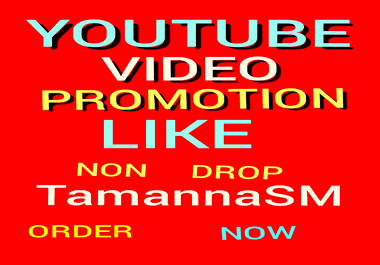BEST YOUTUBE VIDEO PROMOTION NON DROP & ORGANIC HIGH QUALITY WITH SUPER FAST