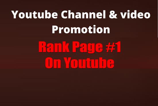 I will provide full youtube promotion