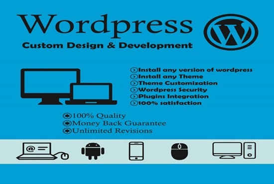 I will offer install wordpress theme setup demo and customize, plugin within 24 hour
