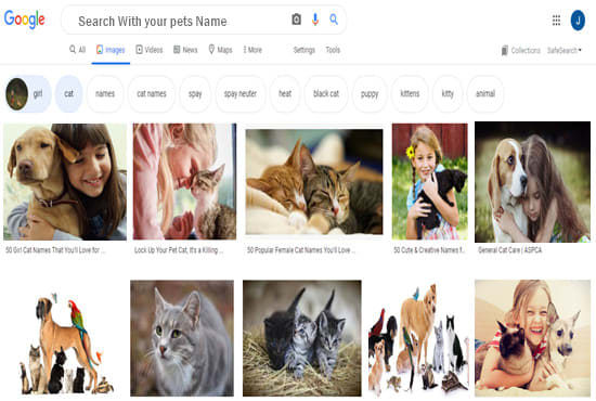 Google image SEO,  show your pets image on google 1 page