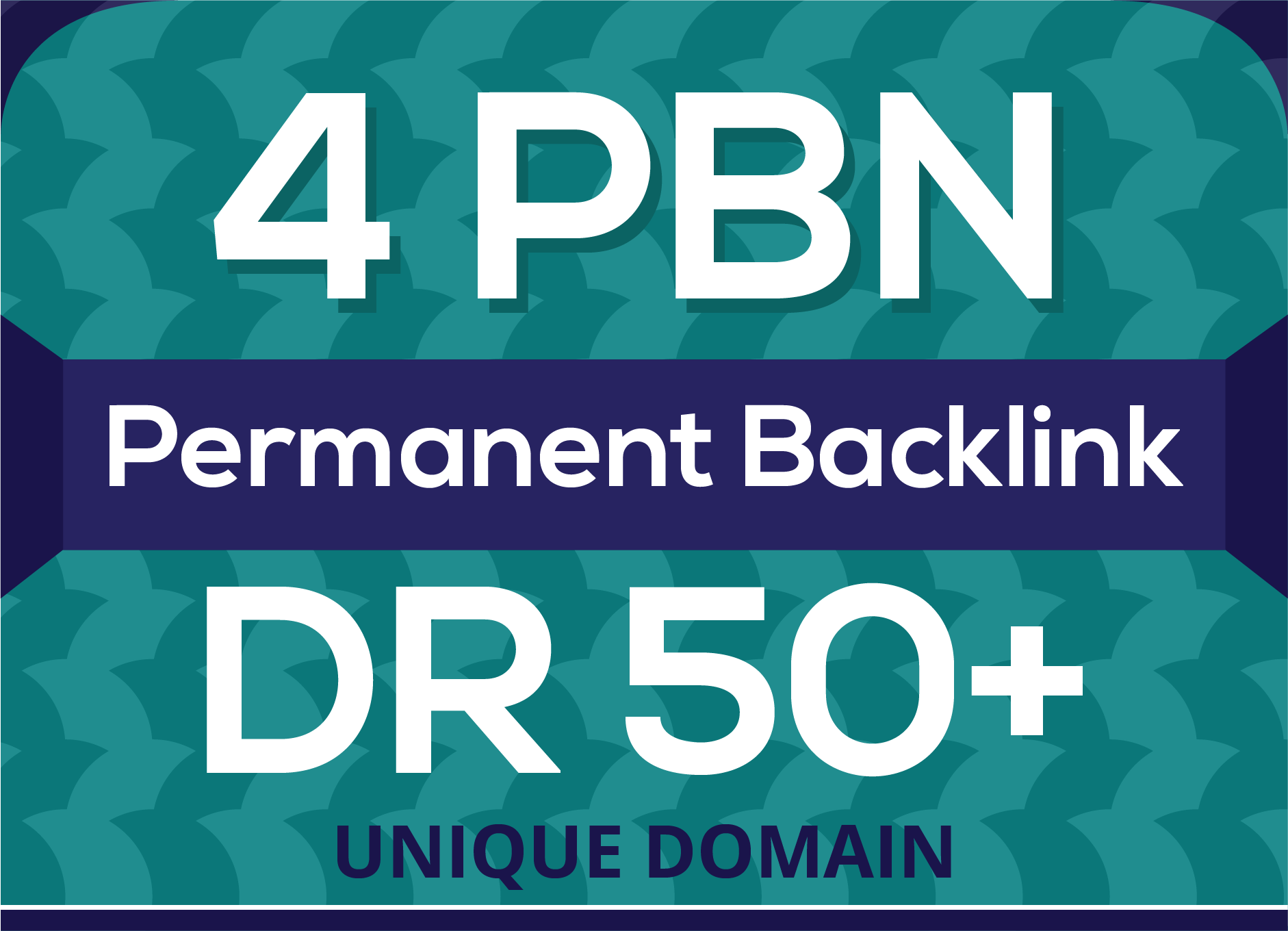 I Will 4 Pbn permanent Powerful Homepage links DR 50+ for Ranking
