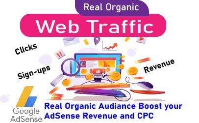 I will send you AdSense organic traffic to boost your revenue and CPC