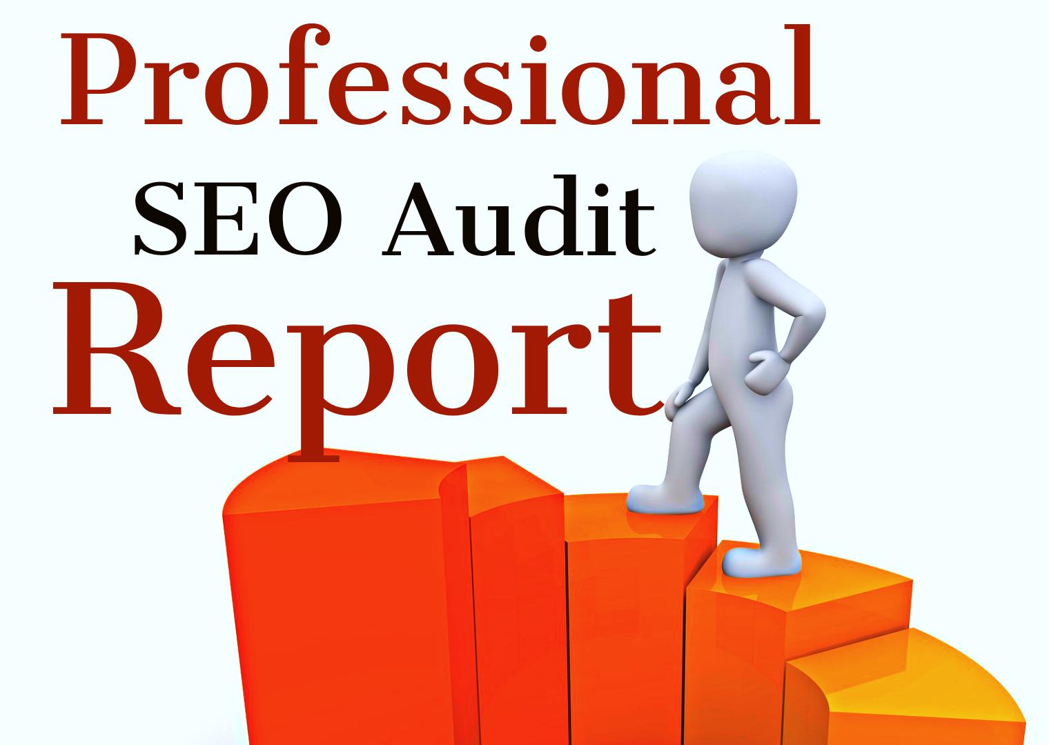 Get Professional SEO Audit Report