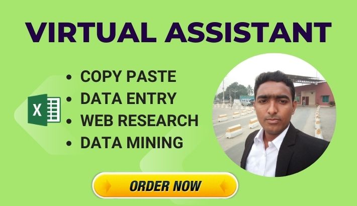 Virtual assistant for data entry,  web research,  copy paste