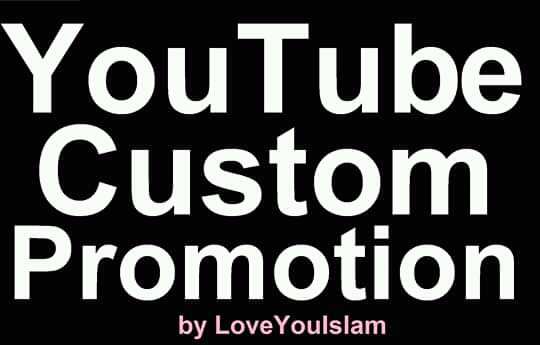 Add High Quality YouTube Custom Promotion Marketing