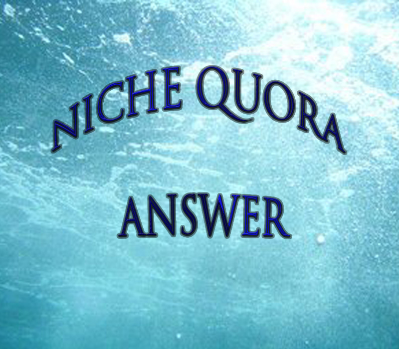 : Provide Niche Relevant 40+ Quora account targeted traffic.