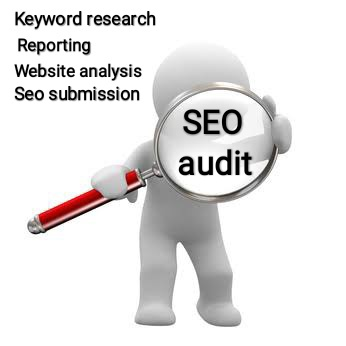 I will provide seo audit reports for your website