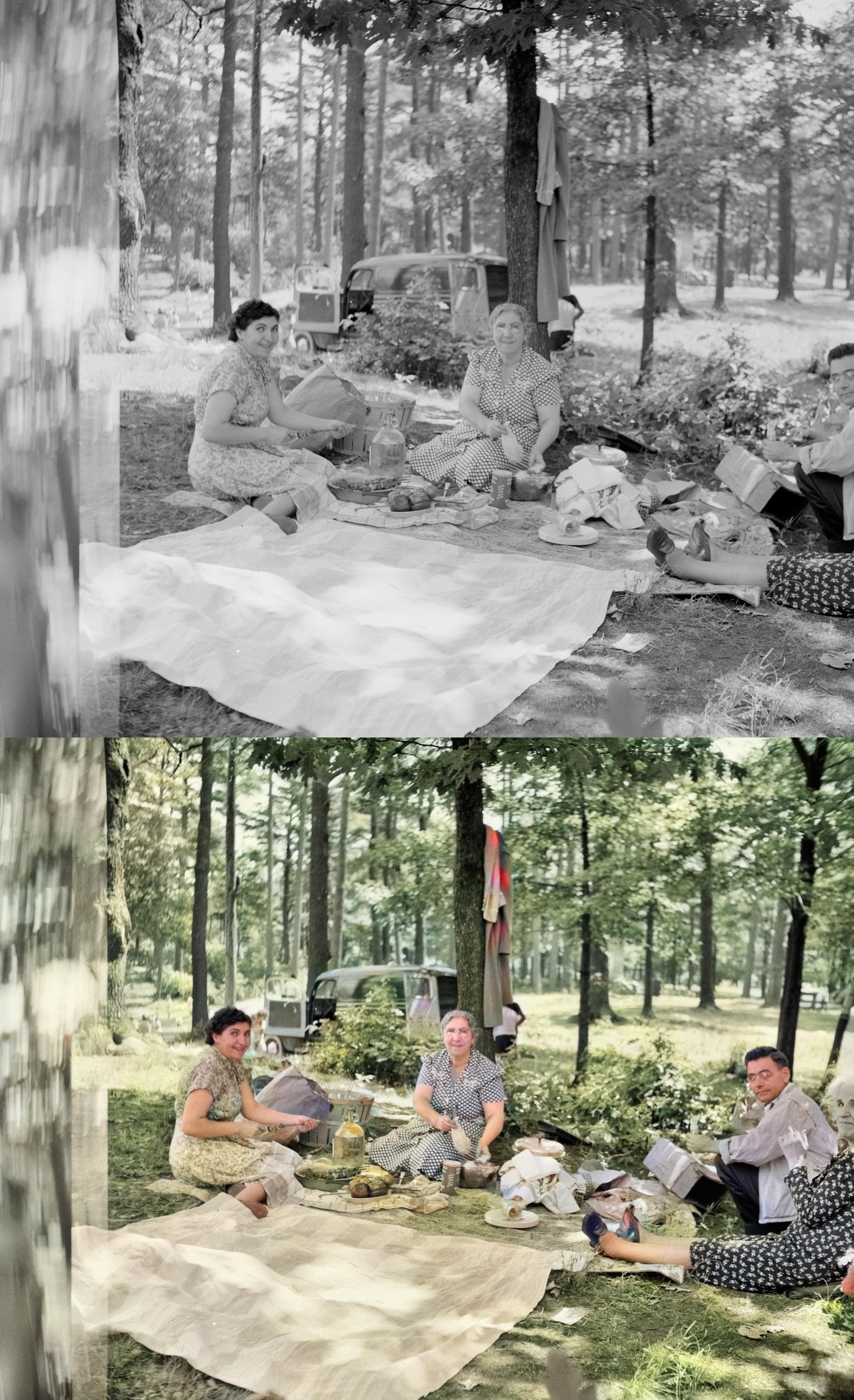 Background Removal, Remove Background on Images Colorize, Restore color FAST. GET FREE SAMPLE!