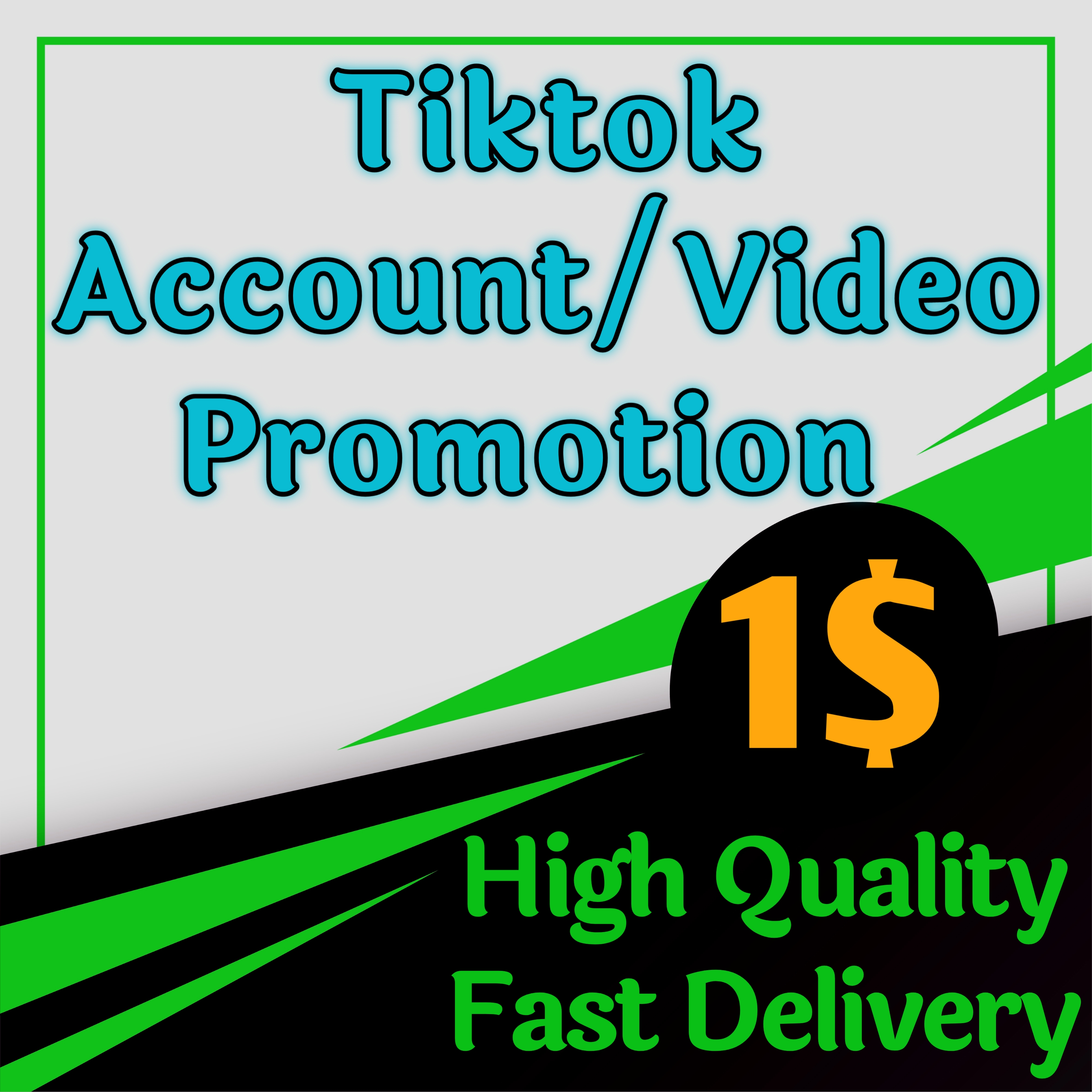 TikTok Account Promotion and Marketing By Social Audience