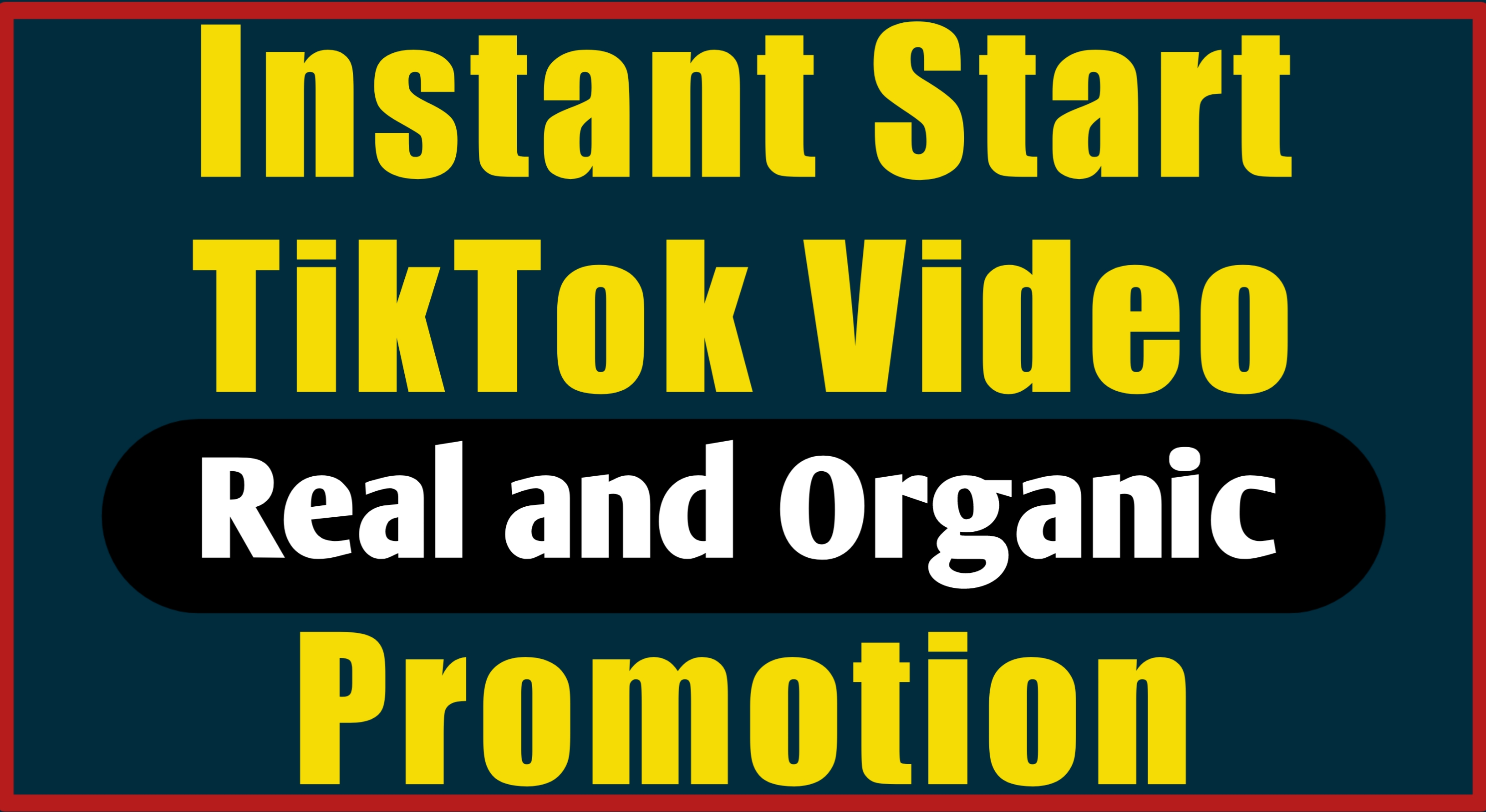 Real and Organic TikTok Video Promotion With Fast Speed