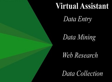 be your virtual assistant for data entry