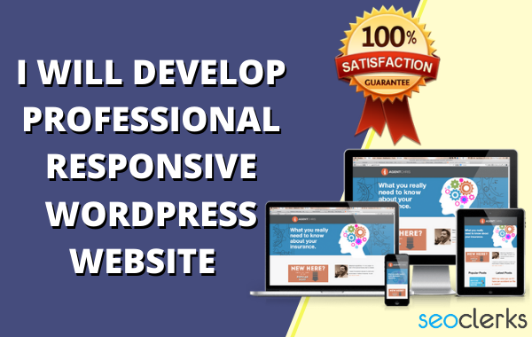 I will develop wordpress website design or blog professionally