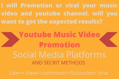 I will Promotion or viral your music video. will you want to get the expected results