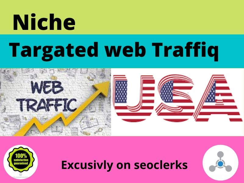 I will do niche targeted USA web traffic