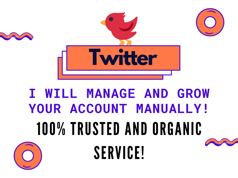 I will manage and grow your Twitter account manually