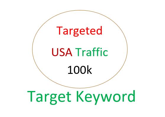 100K USA organic and targeted traffic