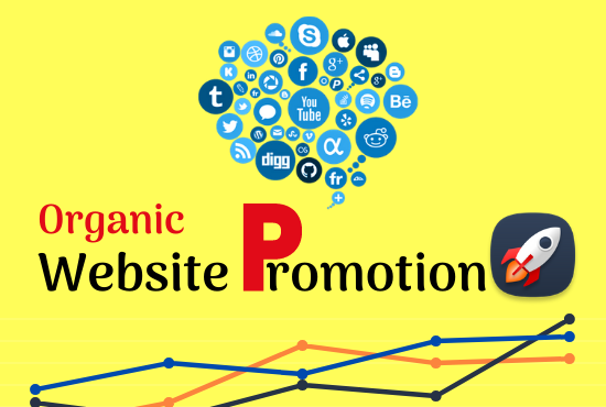 I will do website promotion with real traffic