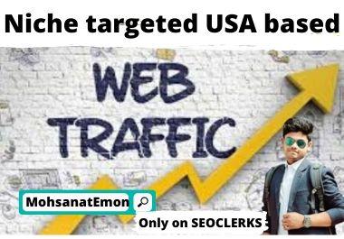 Niche targeted USA based web traffic.