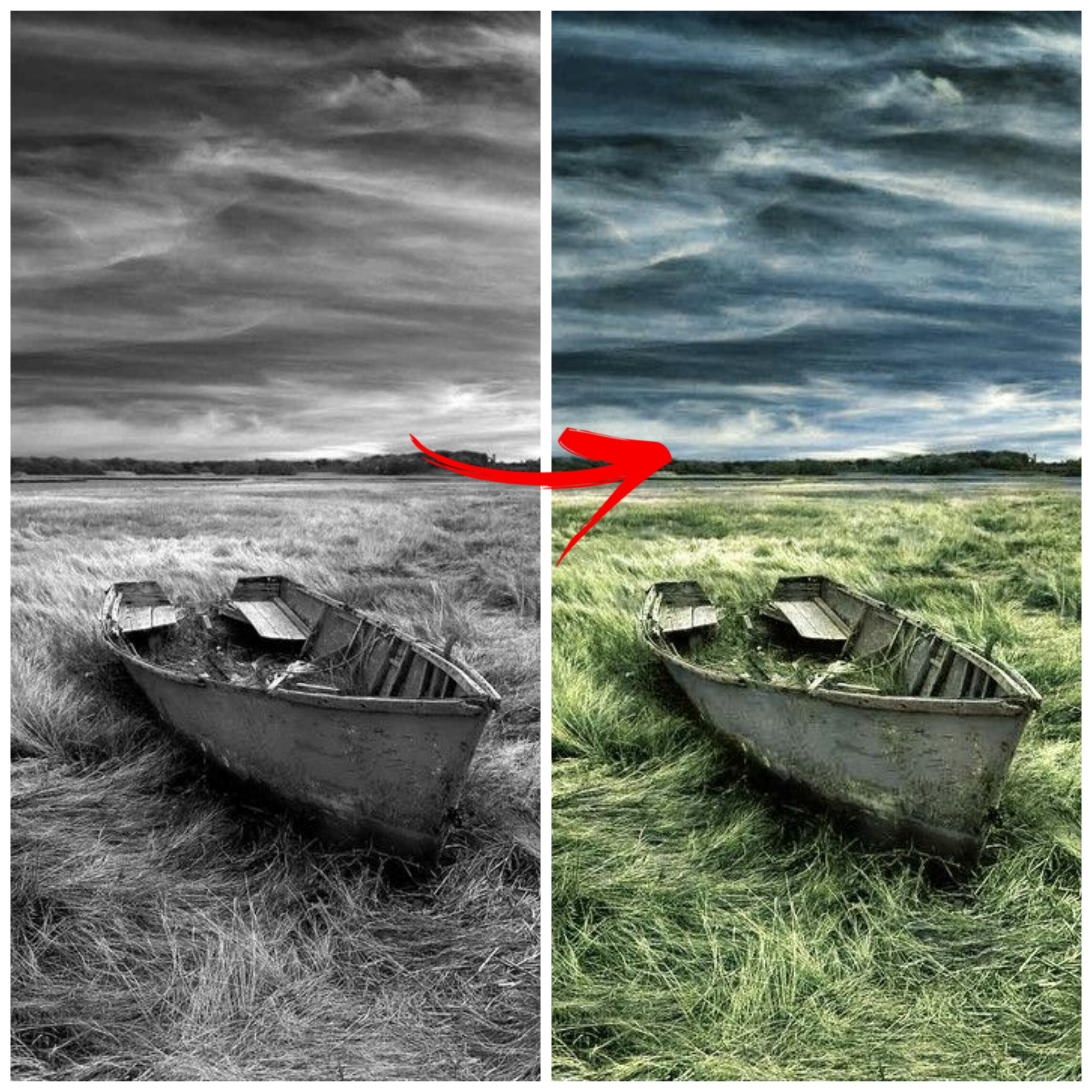 I WIll Colour Your B&W Image To Be a Realistic Image
