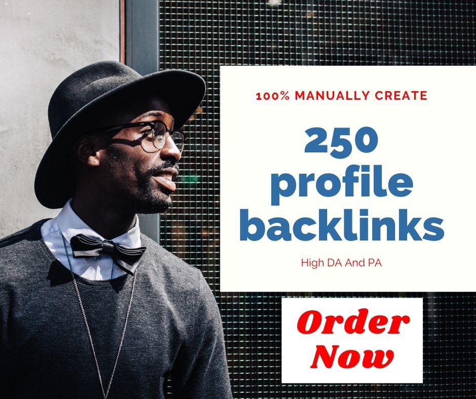 I will do 250 profile backlinks manually create rank your website