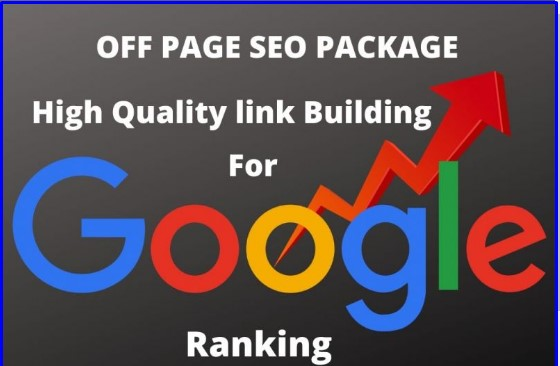 High PA DA TF CF HomePage White Hat SEO Link Building Package for Ranking on Google Search