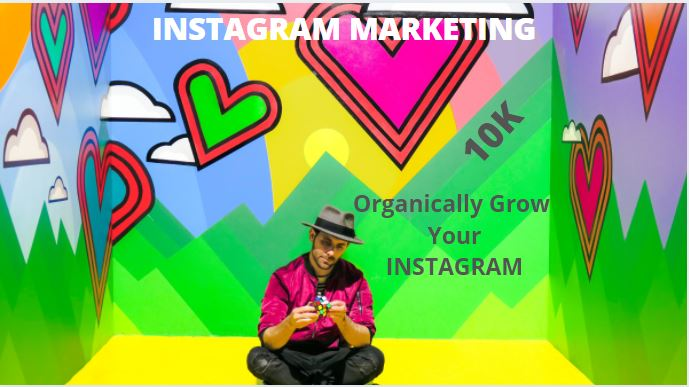I will grow and promote your instagram page organically non drop service