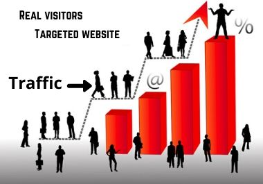 I will drive targeted organic web traffic, real visitors.