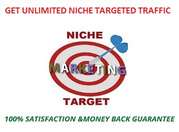 To grow your website traffic get 400 niche targeted traffic.