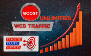 i will send organic targeted world wide web traffic.